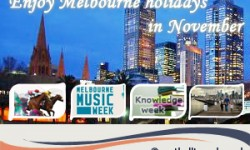 November Promises a Whale of Time in Melbourne s