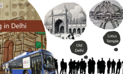 An Extraordinary and Free Dose of Sightseeing in Delhi