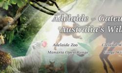 Adelaide – Gateway to Australia Wildlife