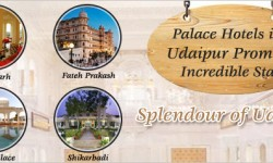 Palace Hotels in Udaipur Promise Incredible Stay