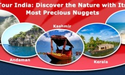 Tour India: Discover the Nature with Its Most Precious Nuggets