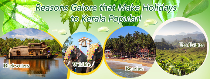 Reasons galore that make holidays to Kerala destinations