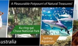 Sydney - A Pleasurable Potpourri of Natural Treasures