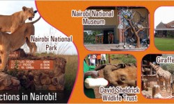 A Window to Top Attractions of Nairobi for Holidaymakers