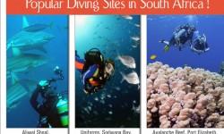 Popular Diving Sites in South Africa - Thrilling Adventure Destination