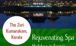Top Choices for Rejuvenating Spa Holidays in Scenic Kerala