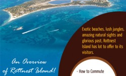 An Overview of Rottnest Island, a Slice of Paradise in Western Australia