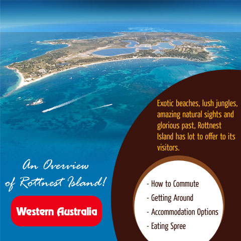 an-overview-of-rottnest-island