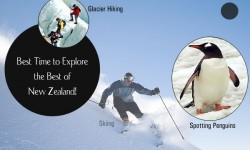 Best Time to Explore the Best of New Zealand