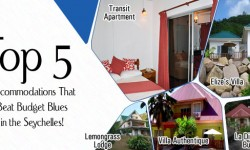 Top 5 Accommodations That Beat Budget Blues in the Seychelles