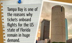 A Quick Look at Some Popular Attractions in Tampa, Florida