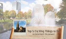 Top 5 Exciting Things to Do in Christchurch This January