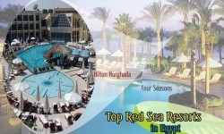 Top Red Sea Resorts of Egypt Loved By Holidaymakers