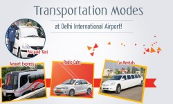 Choice of Convenient Transportation Modes at Delhi International Airport