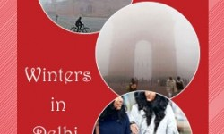 Useful Tips for Braving Winters in Delhi, India