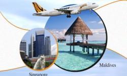 Tigerair Starts Weekly Direct Flights to the Maldives