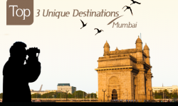 Give Flights to Your Fancies at Top 3 Unique Destinations around Mumbai, India