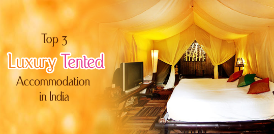 luxury-tented-accommodation-in-india
