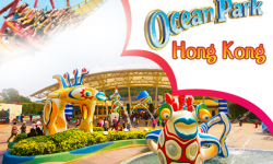 Ocean Park – A Tempting Lure behind the Popularity of Hong Kong Flights!