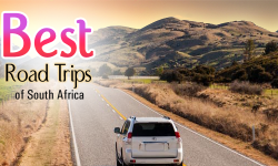 Best Road-Trips to Peep into Diversified and Exciting Facets of South Africa
