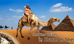 Most Popular Excursions for a Perfect New Year Holiday in Sharm el Sheikh