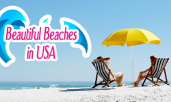 Most Secluded Beaches in the USA that are worth Exploring
