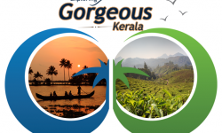 Exploring Gorgeous Kerala in February and March