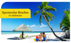 Spectacular Beaches in the Andamans that promise Mesmeric Experiences
