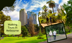 Top 6 Walking Tours in Melbourne for a Unique Holiday Experience