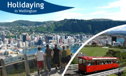 Seven Exciting Things to Do while Holidaying in Wellington