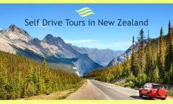 Three Popular Self Drive Tours in New Zealand