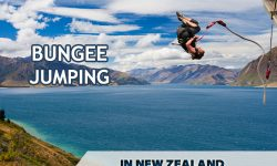 Tips for Bungee Jumping in New Zealand