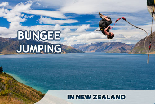 Bungee Jumping, New Zealand Bungee Jumping, Bungee Jumping in New Zealand