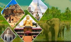 Top Attractions in Sri Lanka