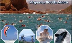 Five Popular Activities in Knysna, South Africa