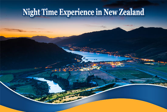 New Zealand Holiday Tours