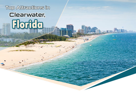 Top attractions in clearwater florida for East coast destinations for couples