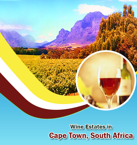 Wine Estates in Cape Town, South Africa