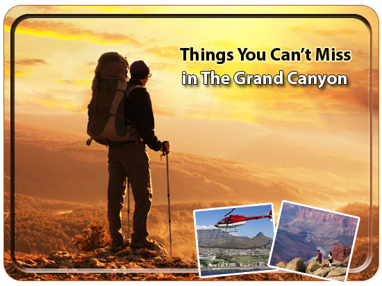 Things You Cant Miss in The Grand Canyon