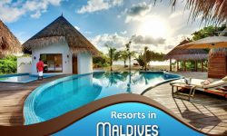 The Most Heavenly Resorts in the Maldives for a Delightful Stay