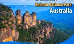 A Few Highlights of Nature's Bounty at Kakadu National Park, Australia