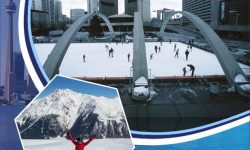 Beat the Chill in Toronto with these Winter Activities