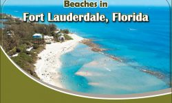 Five Popular Beaches in Fort Lauderdale, Florida