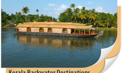 A Sojourn through Kerala's Backwaters