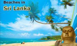 Most Popular Beaches in Sri Lanka