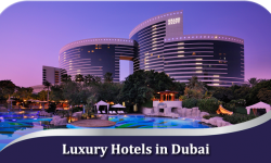 Luxury Hotels in Dubai for Absolute Comfort and Satisfaction