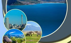 Irresistible Elements of the Big South African Holiday