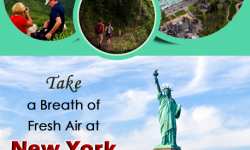 Take a Breath of Fresh Air at New York State Parks