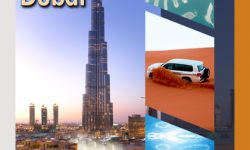 5 Unique Experiences You Can Only Have in Dubai
