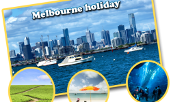 Some of the must-do activities for a marvellous Melbourne holiday
